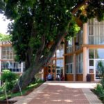 Penzance Primary School